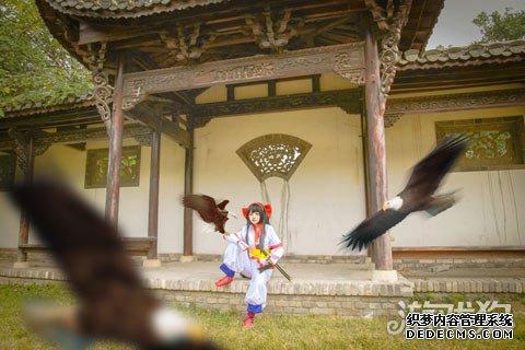 王者荣耀cos 三国女英雄VS日本女刺客